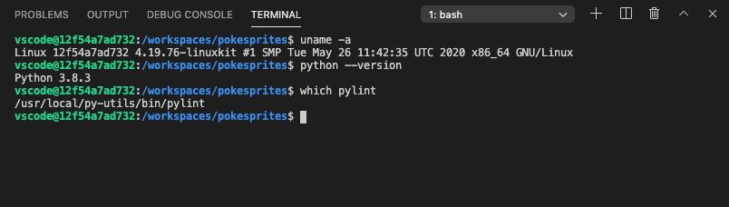 VS Code Remote Container integrated terminal with Python tools